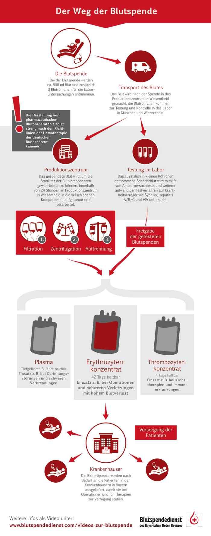 Das Bild zeigt eine graphische Darstellung des Weges einer Blutspende.